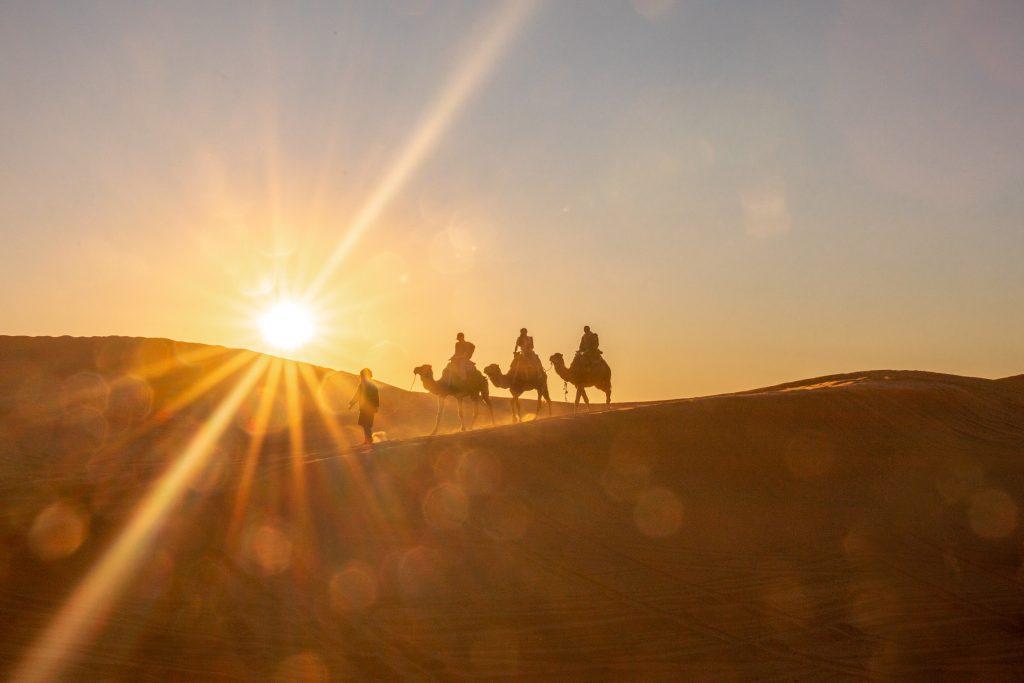 kamel karavane in marokko